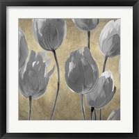 Grey Tulips I Framed Print