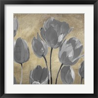 Grey Tulips II Framed Print