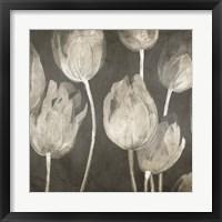 Washed Tulips I Framed Print