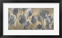 Framed Grey Tulips