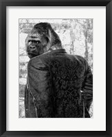 Framed Ape in a Suit
