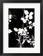 Framed Silhouette Leaves 1