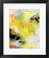 Framed Radiance