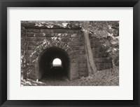 Framed Juniata Tunnel