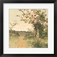 Country Pond 5 Framed Print