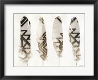 Feathers 1 Framed Print