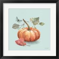 Autumn in Nature 04 on Aqua Framed Print