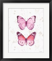 Obviously Pink 11A Framed Print