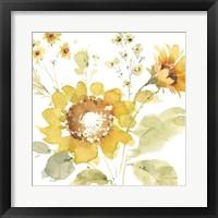Sunflowers Forever 04 Framed Print