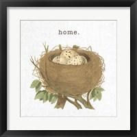 Spring Nest II Home Framed Print