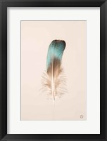 Floating Feathers IV Framed Print