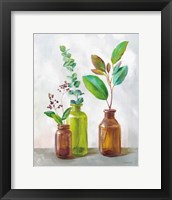 Natural Riches III Framed Print