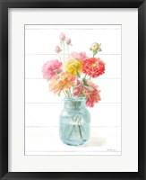 Homegrown Summer III Framed Print