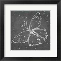Silver Wings II Framed Print