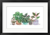 Happy House Plants I No Words Framed Print