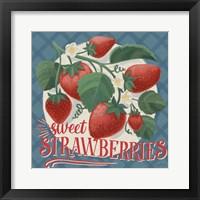 Berry Breeze IV Framed Print