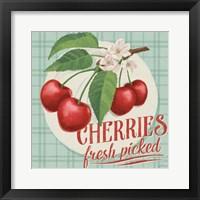 Berry Breeze III Framed Print