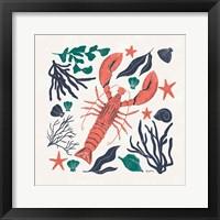 Coastal Reef III Framed Print