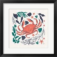 Coastal Reef II Framed Print
