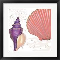 Shimmering Shells I Framed Print