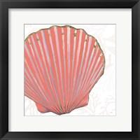Framed Shimmering Shells XI
