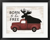 Framed Born to be Free Moose