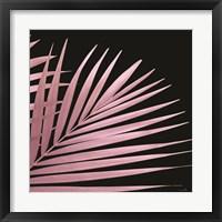 Framed Pink Palm