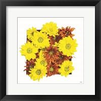 Floral Pop III Framed Print