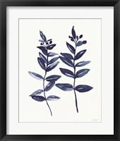 Nature in Indigo 3 Framed Print
