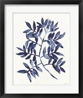 Nature in Indigo 2 Framed Print