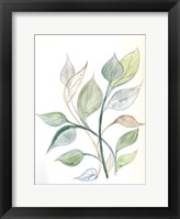 Surfaced Growth 2 Framed Print