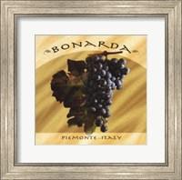 Framed Bonarda, Piemonte