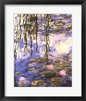 Framed Waterlilies (pink flowers)