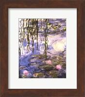 Framed Waterlilies (pink flowers)