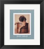 Bucket Dweller Framed Print