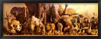 Framed Noah's Arc