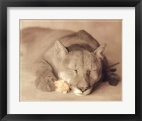Framed Lion with Rose