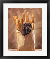 Framed Puppy