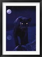 Framed Black Panther In Moonlight