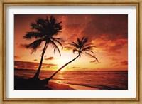 Framed Tropical Sunset