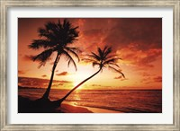 Framed Tropical Sunset