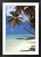 Framed Tropical Beach