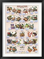 Framed Frogs and Toads