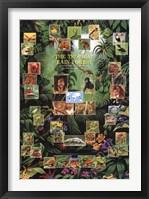 Framed Tropical Rain Forest