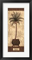 Framed Botanical Palm II