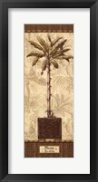 Framed Botanical Palm IV