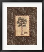Vintage Palm I Framed Print