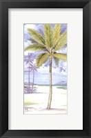 Framed Palm Island II