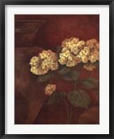 Tuscan Summer II Framed Print