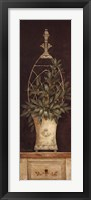 Olive Topiary II Framed Print